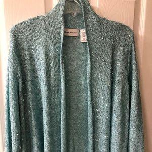 Ladies Sequined Sweater, Turquoise